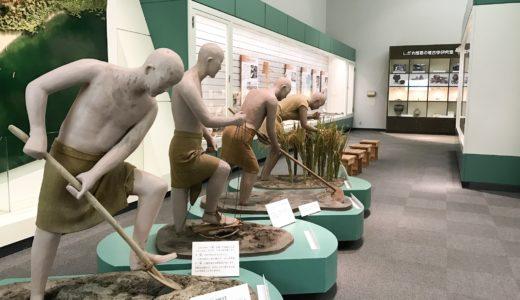 安土城考古博物館 展示