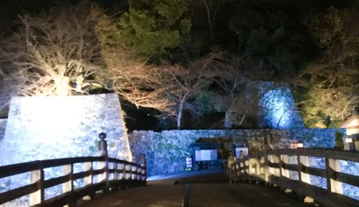 彦根城明かり2018 表門
