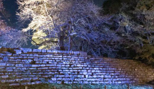 彦根城明かり2018 石垣