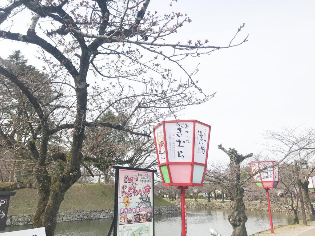 2019.03.28  彦根の桜