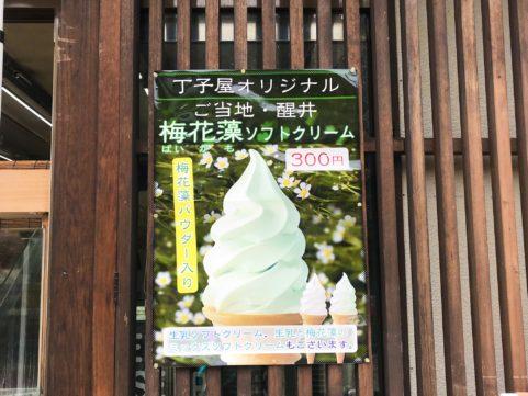丁子屋梅花藻ソフトポスター
